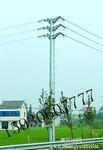 双回路耐张电力钢杆图片