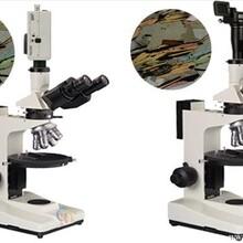晶体内部分析显微镜,高精度反射偏光显微镜