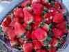 苏鲁交界万亩草莓种植基地提供大量草莓代收