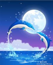 妙言丝绸布新款钻石画月光海豚