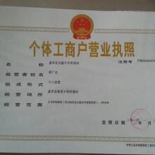 广元孔雀苗一只多少钱#保证成活率!图片