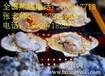 李连杰也吃的烧烤哪里有培训烤猪蹄培训烤羊排培训