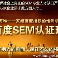上海搜索引擎优化工程师,浦东SEO优化培训实训型
