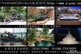 广州提供海鲜池,水族箱,观赏缸,大型亚克力鱼缸设计制作