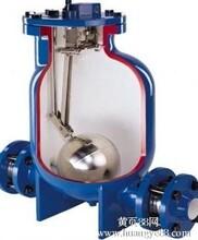 FT14HC斯派莎克疏水阀泵