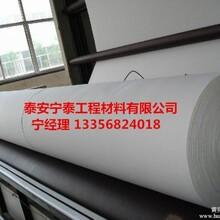 安徽土工布生产厂家土工布厂家