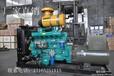 高品质发电机/发电机组厂家直销潍柴系列柴油发电机组,75KW发电机