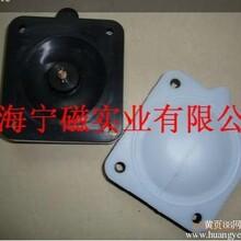 隔膜阀膜片隔膜泵膜片宁磁