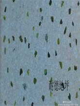 供应惠州水磨石地板 晶面水磨石施工队图片