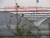 温室大棚骨架造价,不锈钢塑料大棚骨架材料