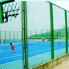 批发阿城透景围栏哈尔滨景观栏杆黑龙江铸铁护栏厂家图片
