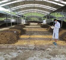 水体净化剂,有机肥发酵剂,秸秆发酵剂,生态有机肥图片