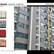 品牌通体砖厂家直销泉州市抢手的通体砖图片