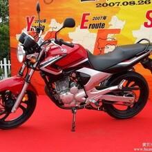 济南Yamaha天剑王YBR250摩托车公路赛摩托车报价和图片大出清