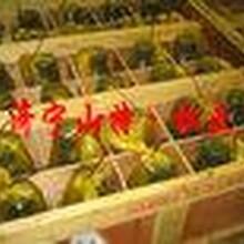 北京小松挖机配件小松装载机配件PC12507矿山机械配件656071