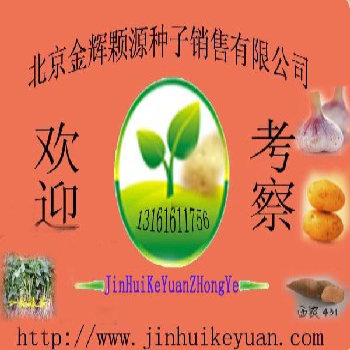 北京金辉颗源种子销售有限公司