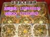 安徽特色小吃武大郎烧饼加盟总部,名师教学,学到真技术