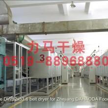 樟子松木片带式干燥设备选型依据及设备参数