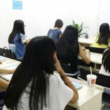 蒲公英学日语