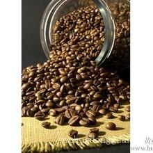 上海咖啡粉进口报关