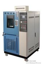 电工电子产品专用湿热试验箱图片
