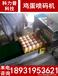 内蒙古赤峰鸡蛋喷码机Kp-17A型号小型鸡蛋喷码机整盘喷码形式