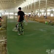 供应樟木头金刚砂地坪施工|耐磨金刚砂地面施工工艺图片