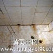 广州开荒清洁地毯清洗地板清洗地板打腊水池清洗