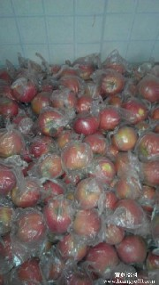 供应陕西红富士苹果批发价格/优质红富士苹果基地图片6