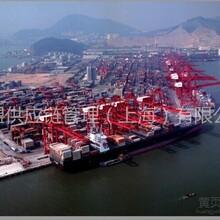 威盟供应链管理(广州)有限公司-广州最大的食品进口清关报检服务团队