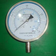 厂家供应316L全不锈钢防腐耐硫压力表YTU-150/PSi/MPa