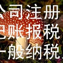 深圳公司注册记账报税需要多少钱,怎么样注册香港公司