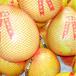 梅州沙田柚,梅州蜜柚,梅州红心柚子批发