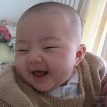宝宝最爱的羊羊100,给宝宝100%的营养