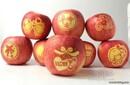郑州红富士带字苹果总批发圣诞狂欢送佳人必选