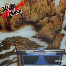 深圳手機殼數碼印刷機手機殼萬能平板打印機直銷圖片