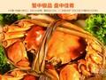 莆田满膏香兴化红膏大闸蟹比一般大闸蟹好在哪里!图片