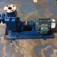 塑泉ZX25-3.2-20自吸清水泵厂家直销图片