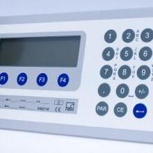 DIS2116数字称重仪表HBM称重仪表