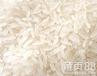 天红酒业常年求购大米