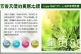 衢州市雅顿化妆品公司护肤品批发价格雅顿银级焕发生机醒肤水