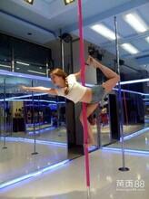 深圳学舞蹈正规专业的舞蹈培训学校包推荐工作