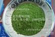 供应蔬菜粉优质25:1大麦苗提取汁粉量大从优