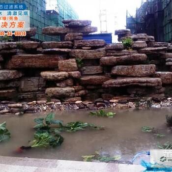 天津省南开区卡利净不锈钢金鱼鱼池过滤喷泉鱼池设计图