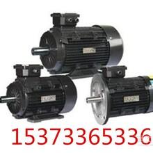 厂家让利销售电动机/节能电机/YE2高效节能电机/型号多价格低