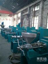 河南少强公司在线咨询,黑龙江花生榨油机,流动花生榨油机图片